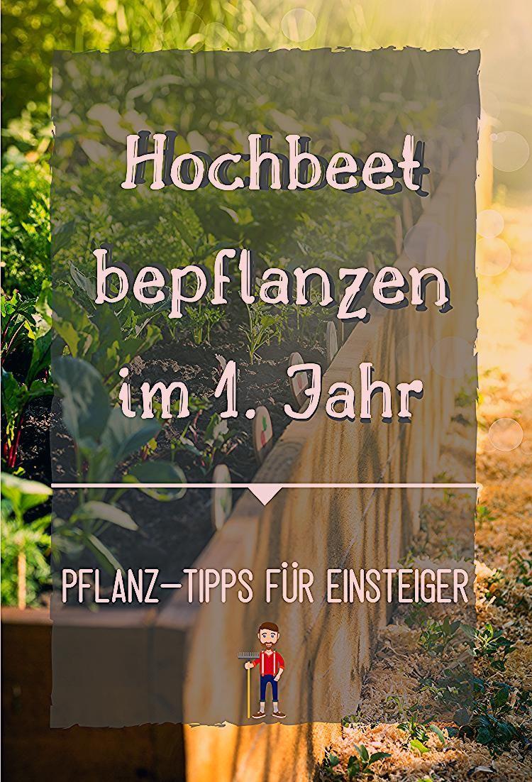 Photo of Hochbeet bepflanzen | Bepflanzung für das 1. Jahr
