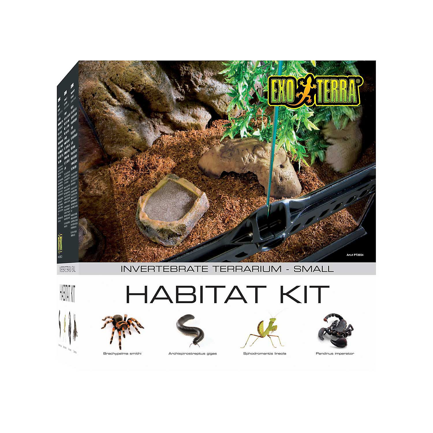 ExoTerra Invertebrate Terrarium Kit Terrarium, Glass