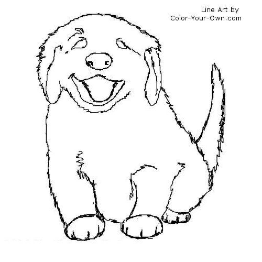 Golden Retriever Coloring Page Golden Retriever Puppies