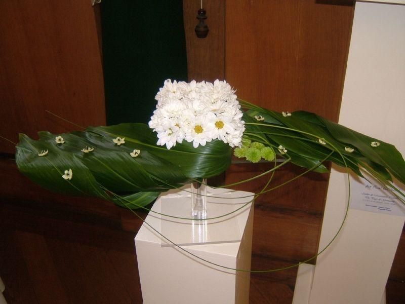 sellette aspidistra carré de fleurs