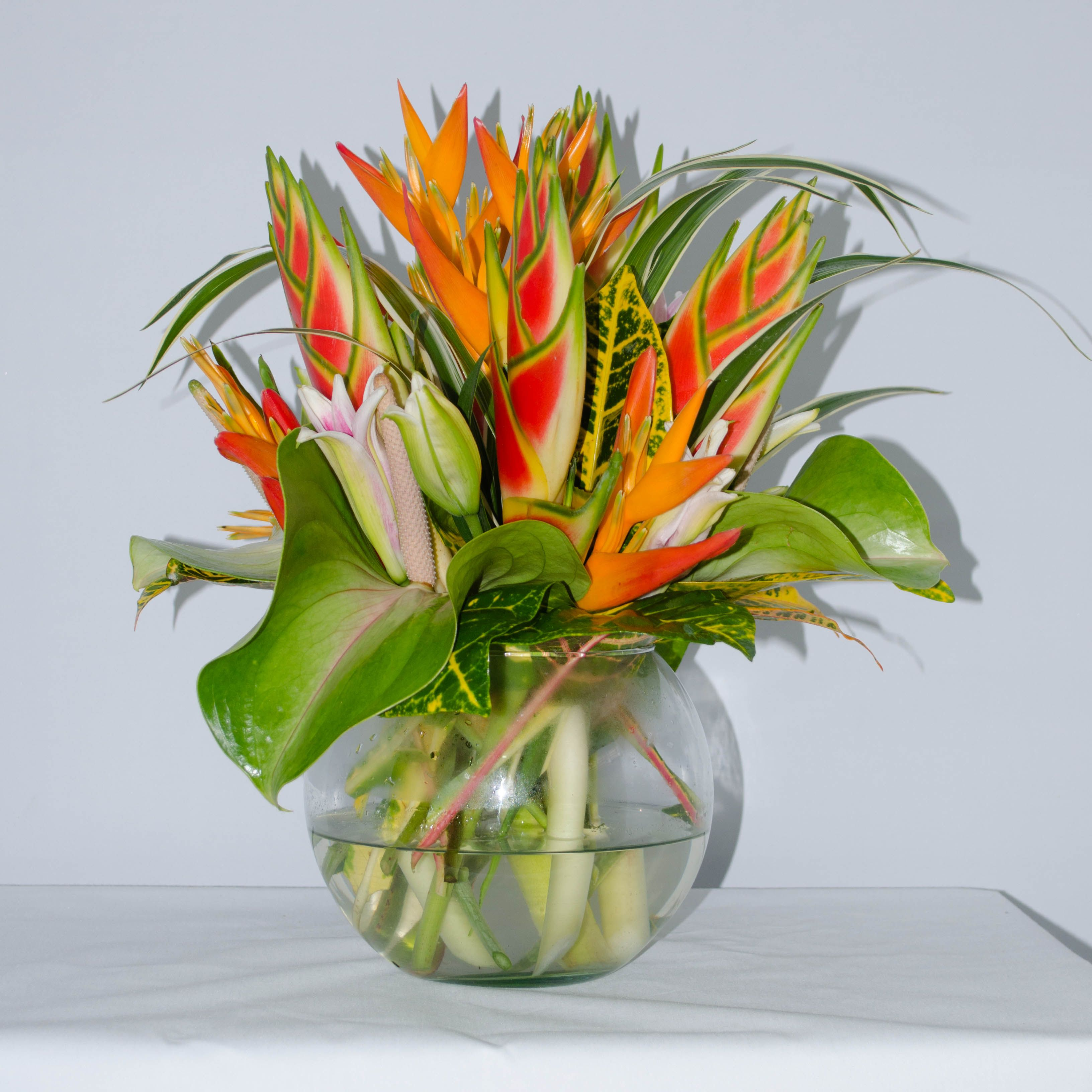 A Bubble Bowl arrangement of Tropical Flowers (Heliconias