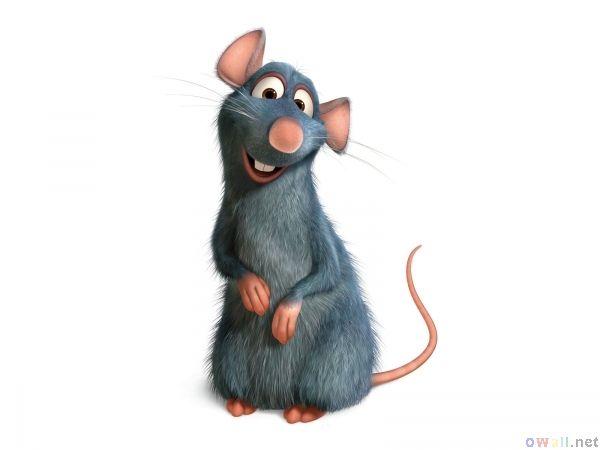 Ratatouille Ratatouille Disney Disney Cartoons Ratatouille Movie