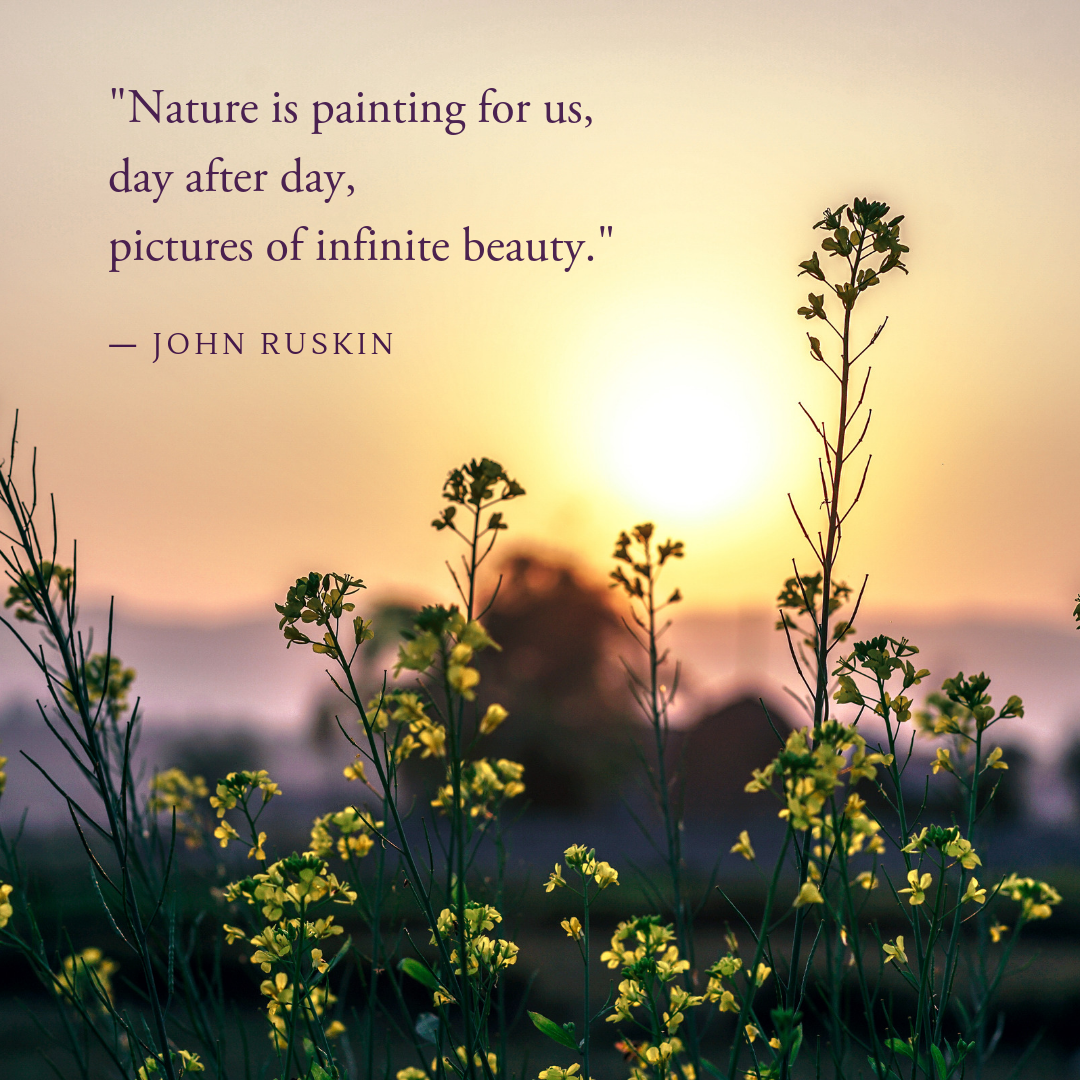 Inspiration From Nature Naturequotes Quotes Positive Vibes