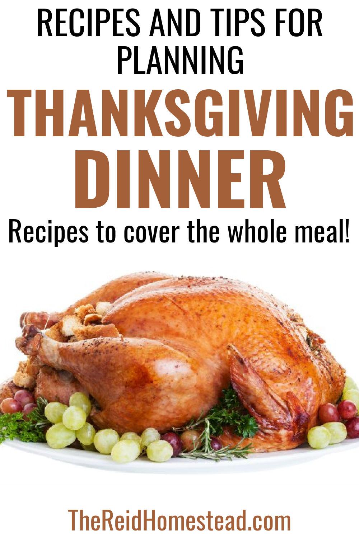 Thanksgiving Dinner Recipes In 2020 Dinner Recipes Thanksgiving Dinner Recipes Thanksgiving Dinner