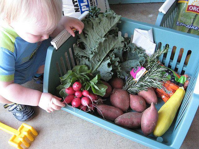 Naples FL Organic Food Co-Op