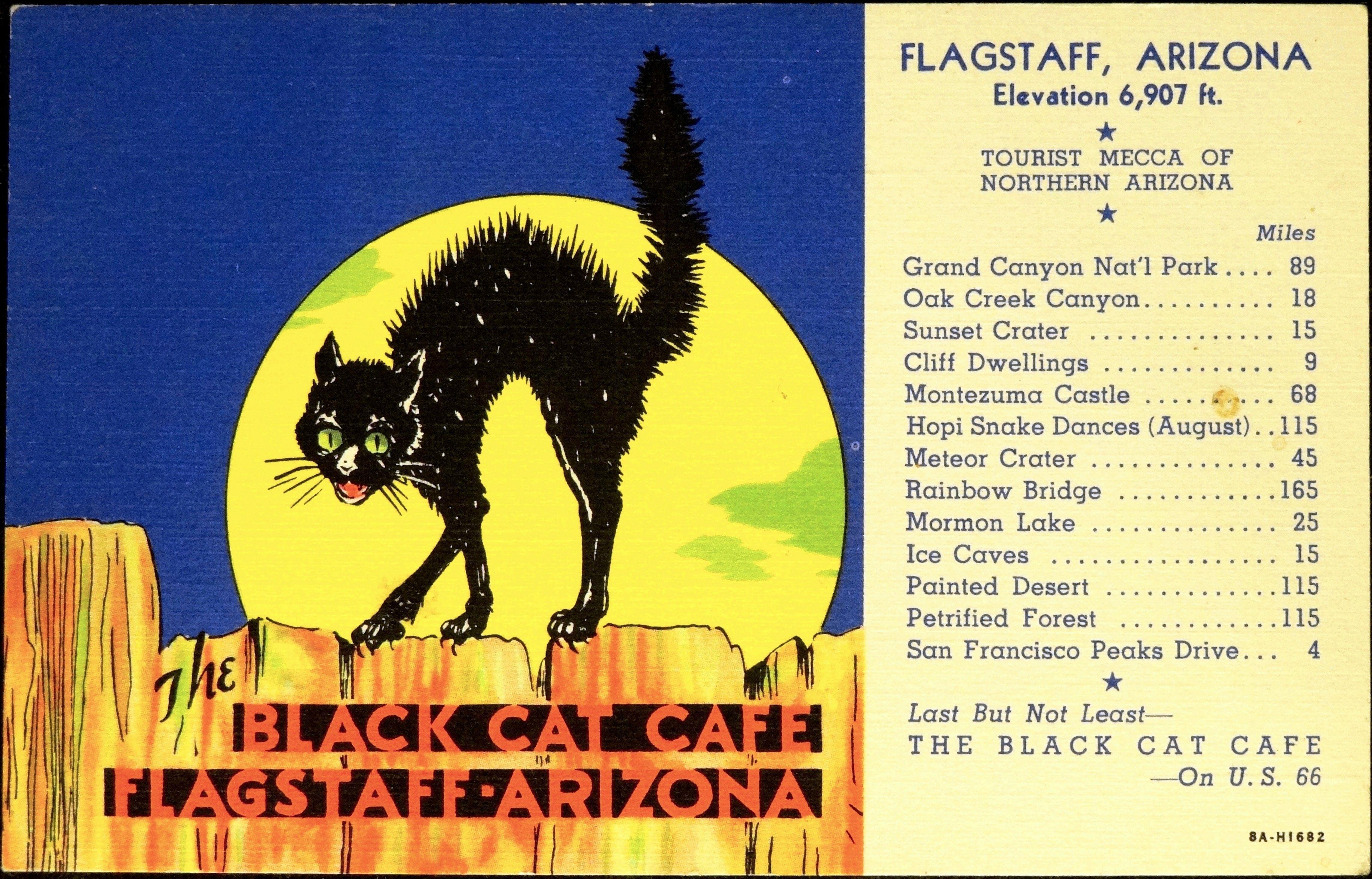 theblackcatcafeflagstaffarizonalinenadvertising