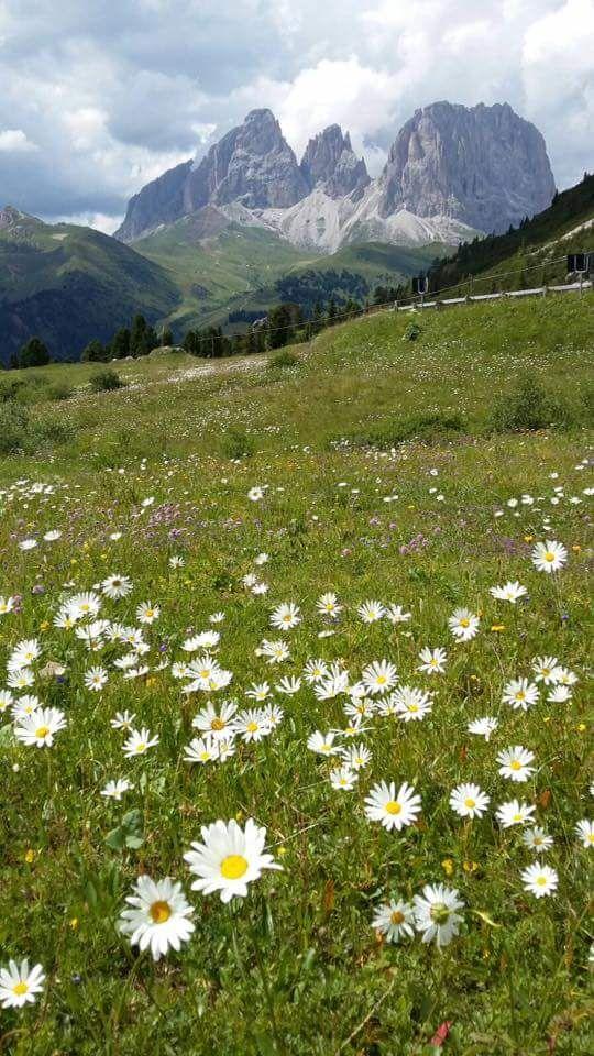 Canazei - Val di Fassa - Marmolada - Dolomiti - Trentino - Italia  By Dream Indigo