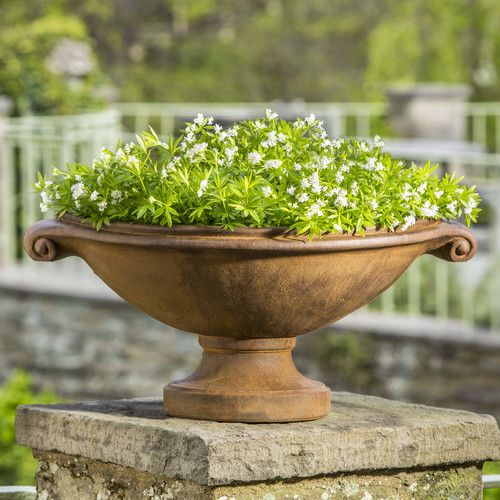 Found it at Wayfairca - Medici Novelty Pedestal Planter by Campania