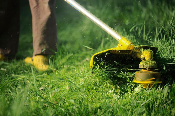 Commercial And Residential Cleaning Services We Are Ready To Work For You Our Straight Forward Approach Is To Offer Yo Grass Clippings Lush Lawn Lawn Care