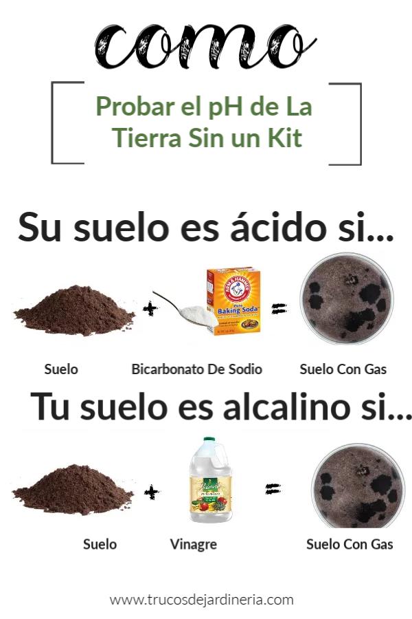 Como Propbar El Ph De La Tierra Sin Un Kit Cultivo De Plantas Jardín De Productos Comestibles Plantas Comestibles