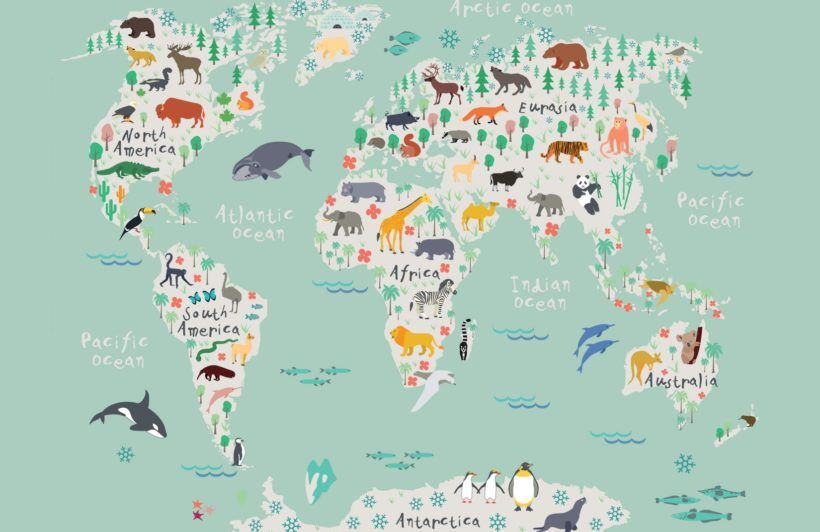 Safari-Kids-Map-Mural-Wallpaper Playroom Pinterest Wallpaper - fresh interactive world map desktop background
