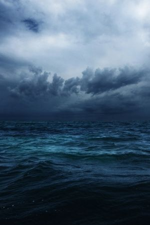 Black sea bottom of the