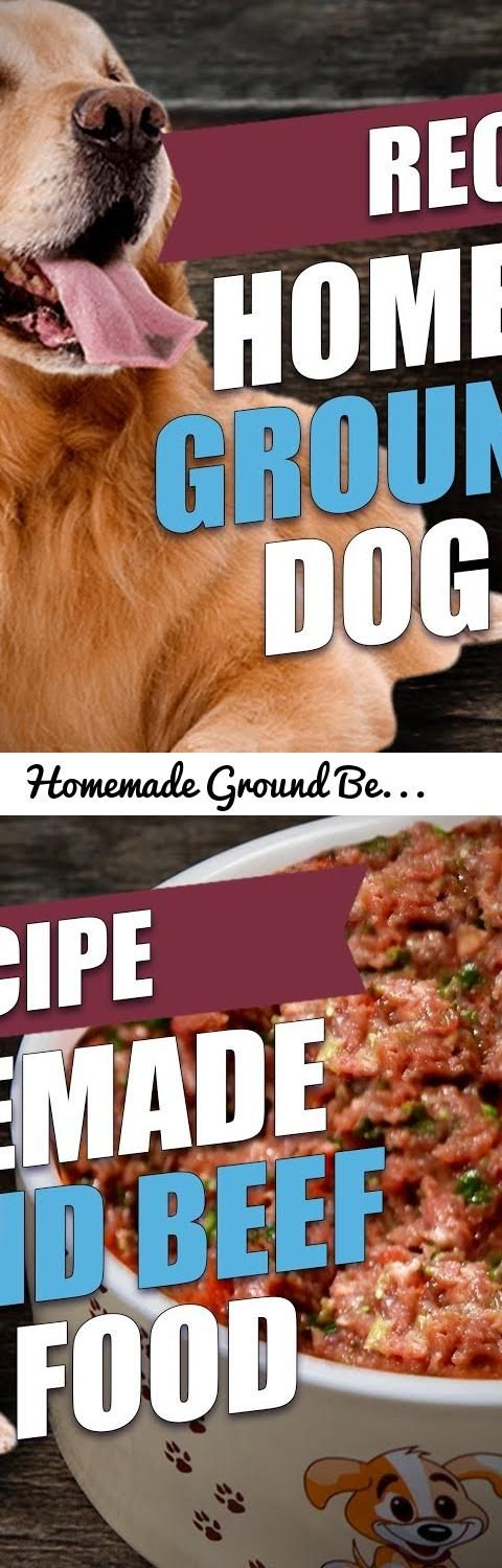 Homemade ground beef dog food recipe tags dogs pets top dog tags dogs pets top dog tips topdogtips homemade dog food homemade ground beef dog food recipe dog food recipe easy dog food recipe dog food recipe forumfinder Gallery