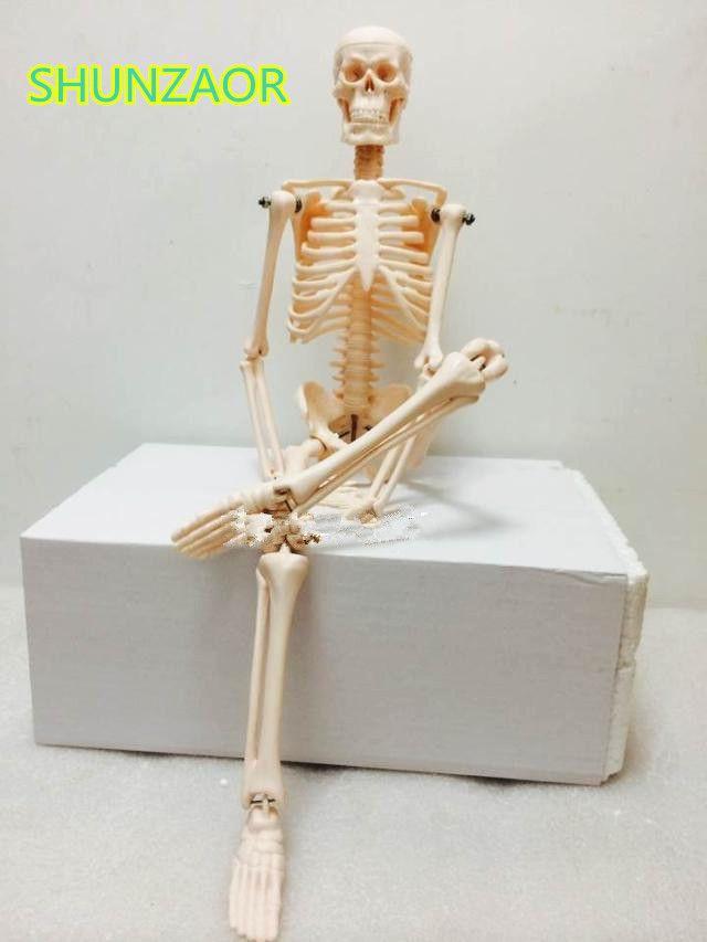 Fexible 45 CM Menschlichen Anatomie Anatomisch Skeleton Modell ...