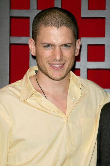 Wentworth Miller Picture 52