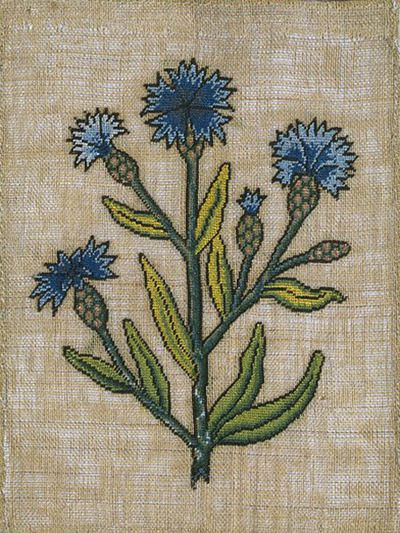 Slip with embroidered cornflowers, made in England c.1600 (via)