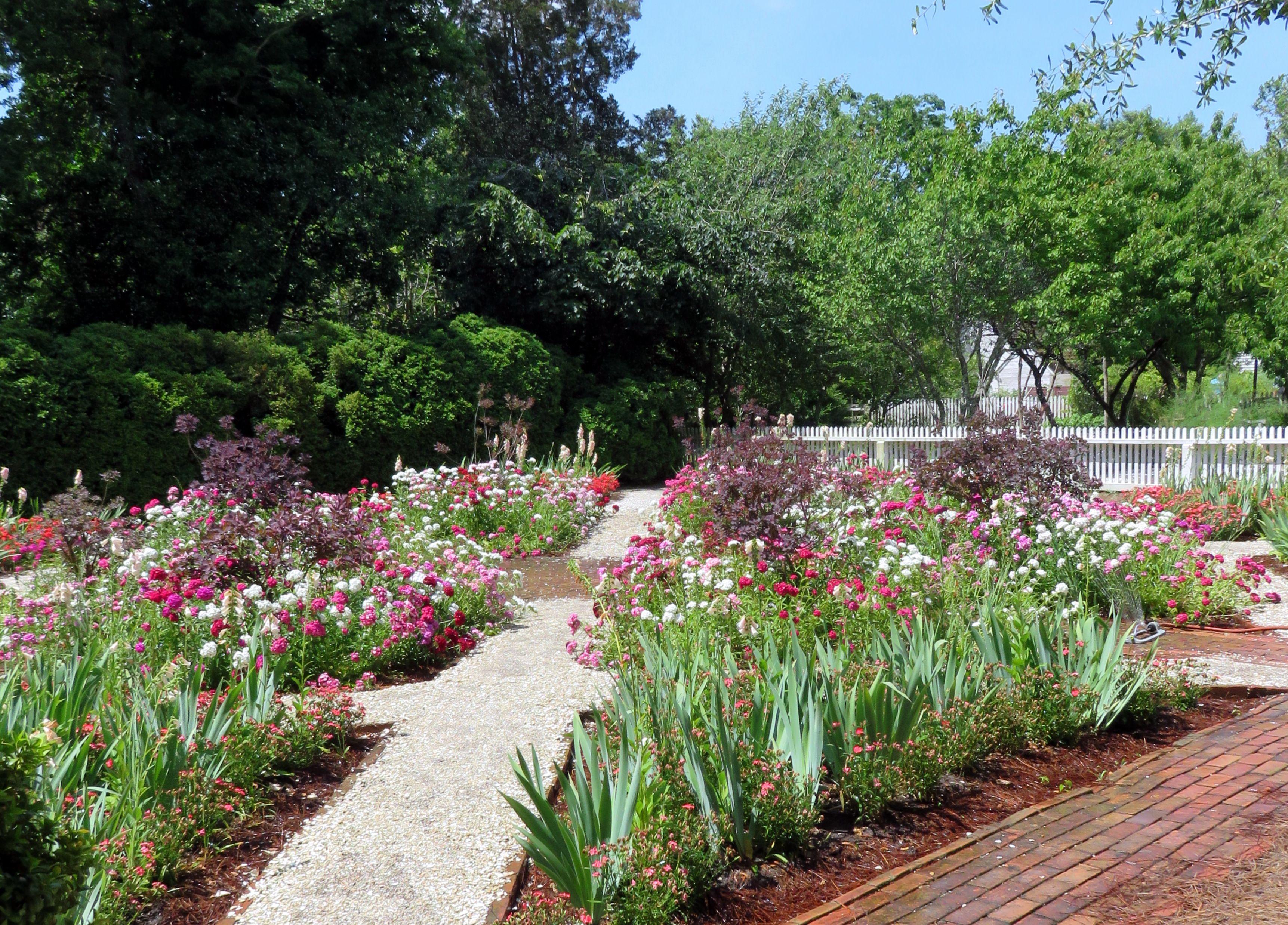 Colonial Williamsburg spring flowers | Colonial Williamsburg ...