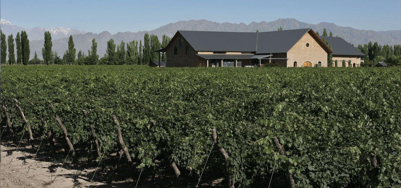 Dominio Del Plata Winery Bodegas Vinos Argentinos Argentina