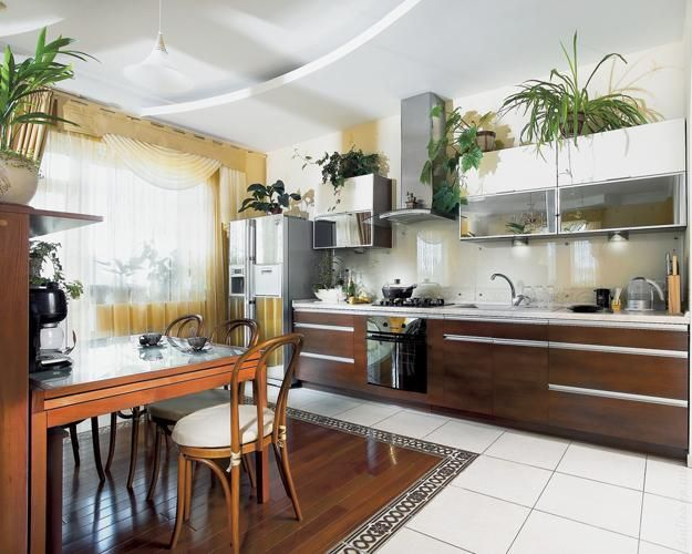 Plants For Top Of Kitchen Cabinets