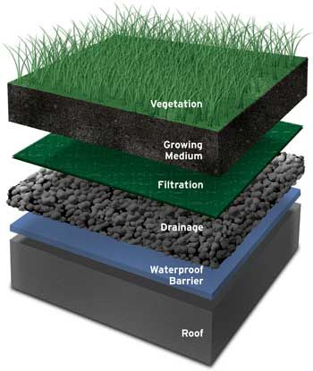 gardens green roofs and beautiful on pinterest : green roof diagram - findchart.co