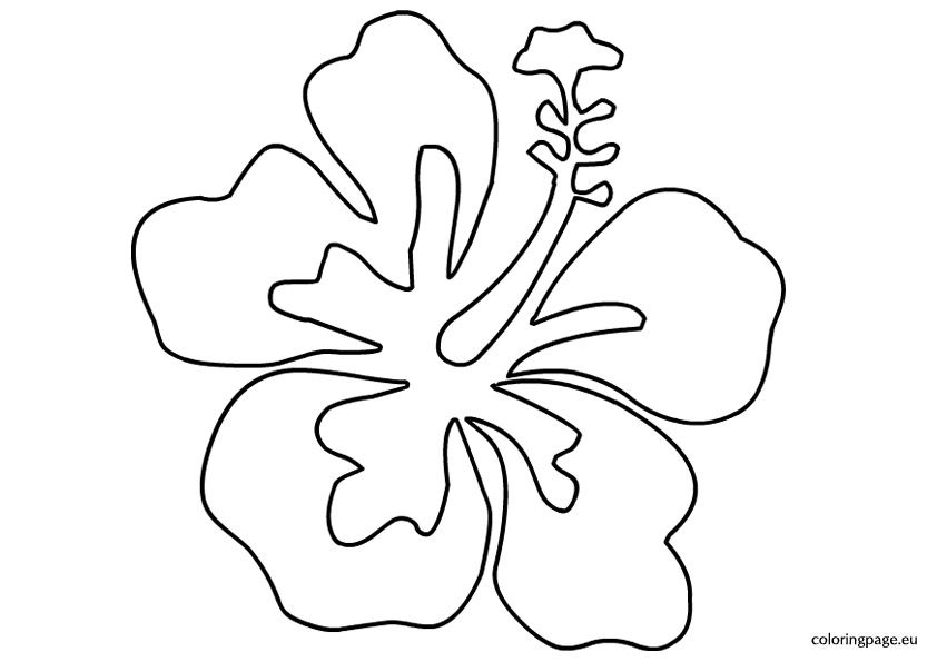 luau-flower-template Tavasz Spring Pinterest Luau, Stenciling - copy free coloring pages of hibiscus flowers