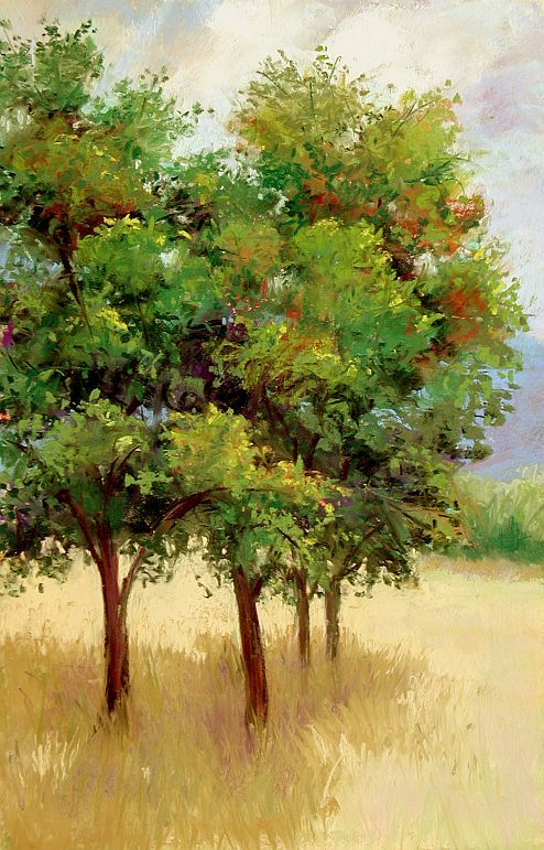 Landscape Painting In Pastels Chapter Twelve Foliage Landscape Drawings Landscape Paintings Tree Painting