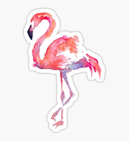 Flamingo · flamingo sticker