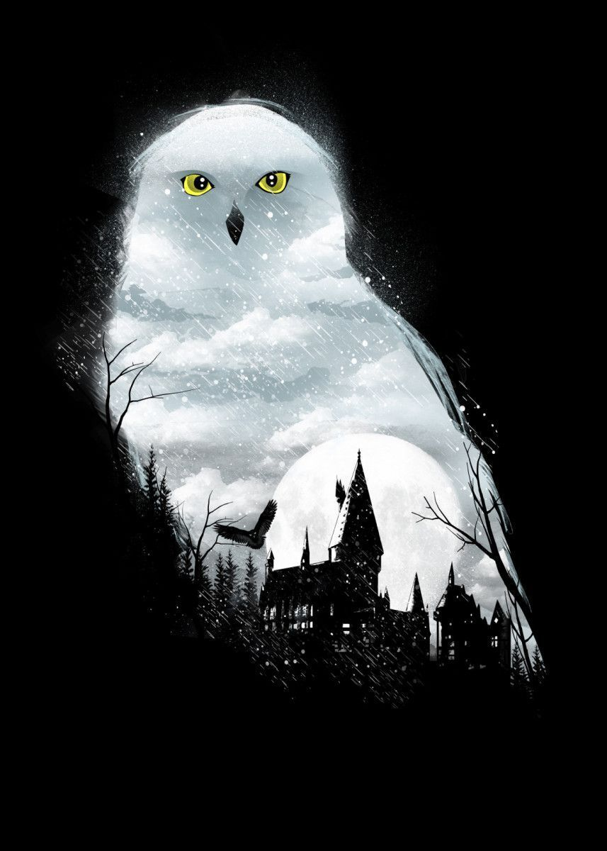 Harry potter owl #artsketches See amazing artworks of Displate artists printed o