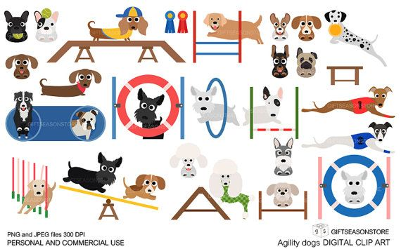 Agility Dogs Digital Clip Art For Personal And Commercial Use