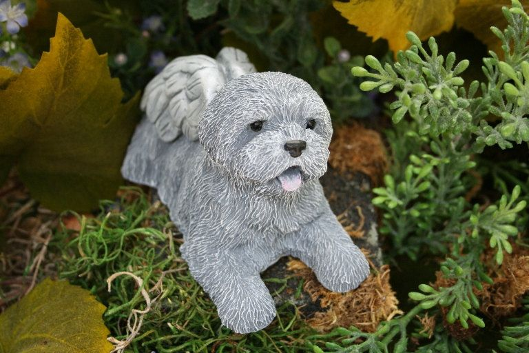 Dog Angel Statues   Dog Memorials   Mixed Breed, Terrier, Shih Tsu, Bichon