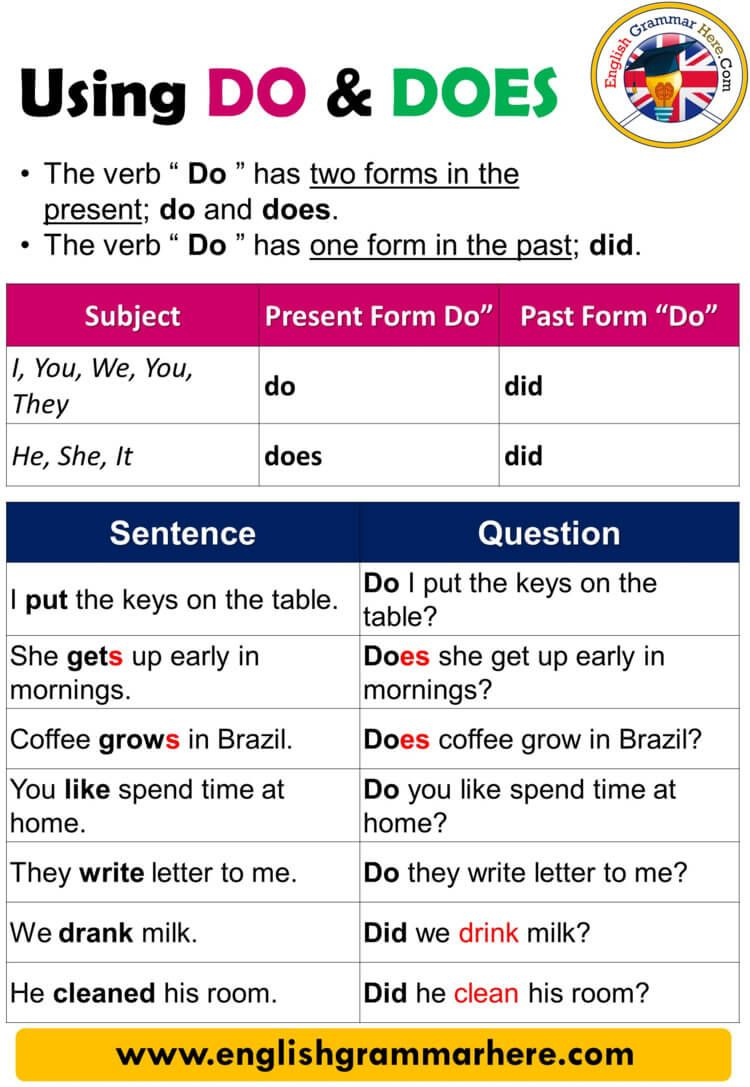 Using Do And Does Definition And Example Sentences Using Do And Does The Verb Do Has Two Forms In The P Learn English English Writing Skills English Grammar