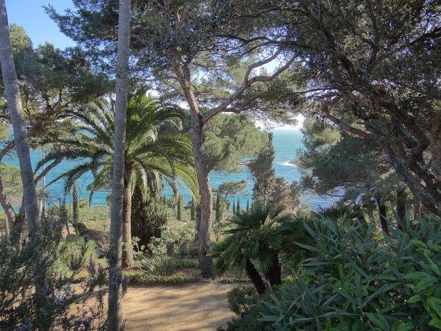 Jardin Botanico Marimurtra De Blanes En Gerona Por Esther