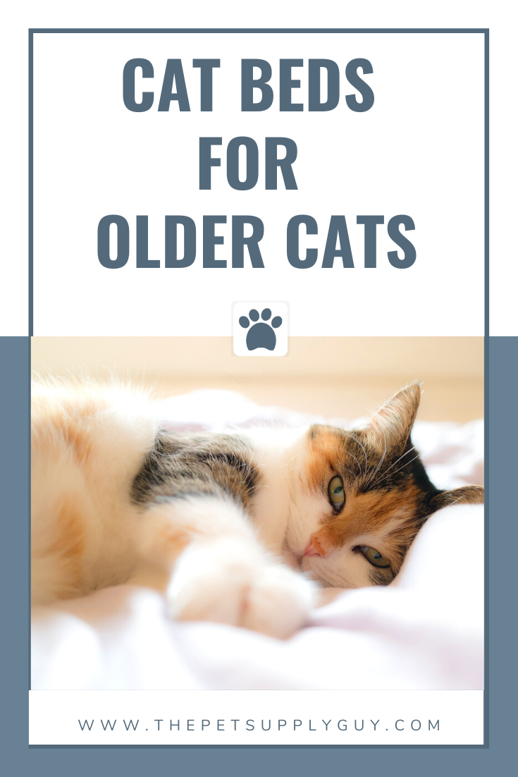 Best Cat Bed For Older Cats The Pet Supply Guy In 2020 Older Cats Cat Sleeping Cat Bed
