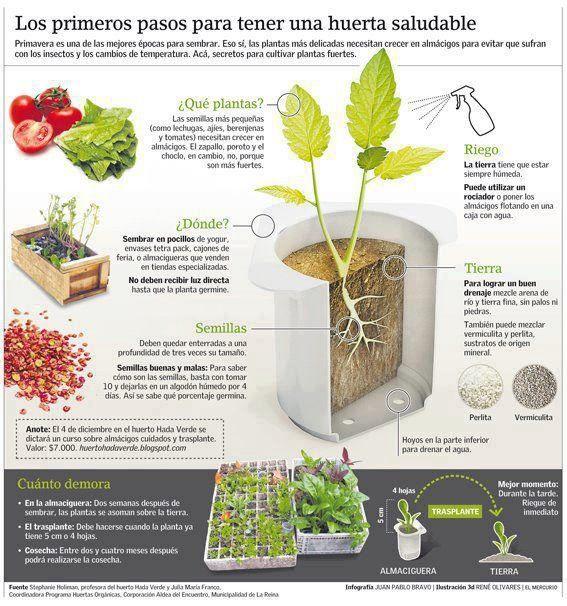 Construcci n de una huerta y gr fico con consejos tiles for Jardineria al aire libre casa pendiente