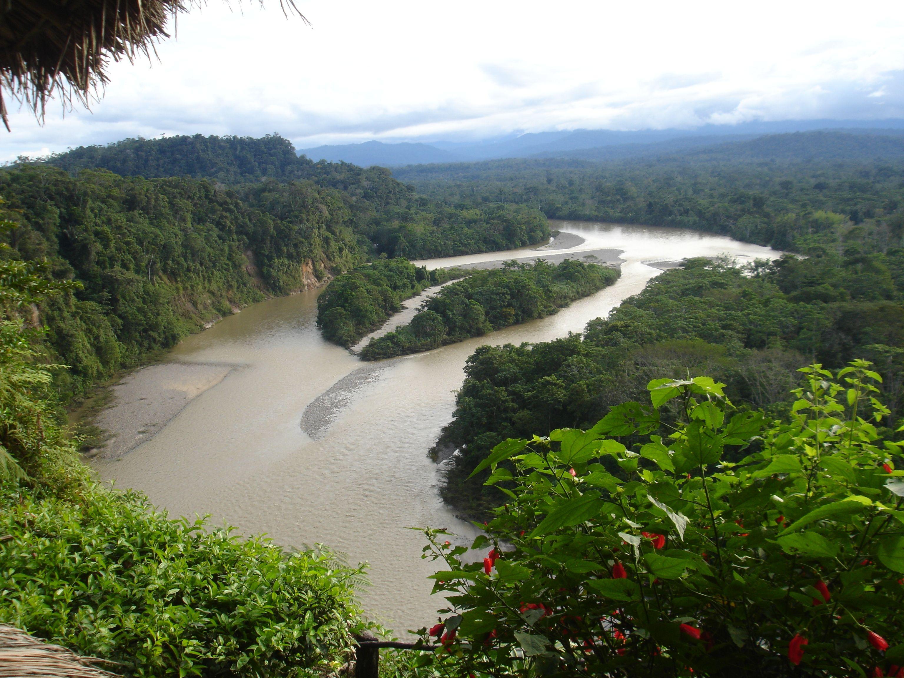 Amazon River Basin Ecuador River Basin River Amazon River