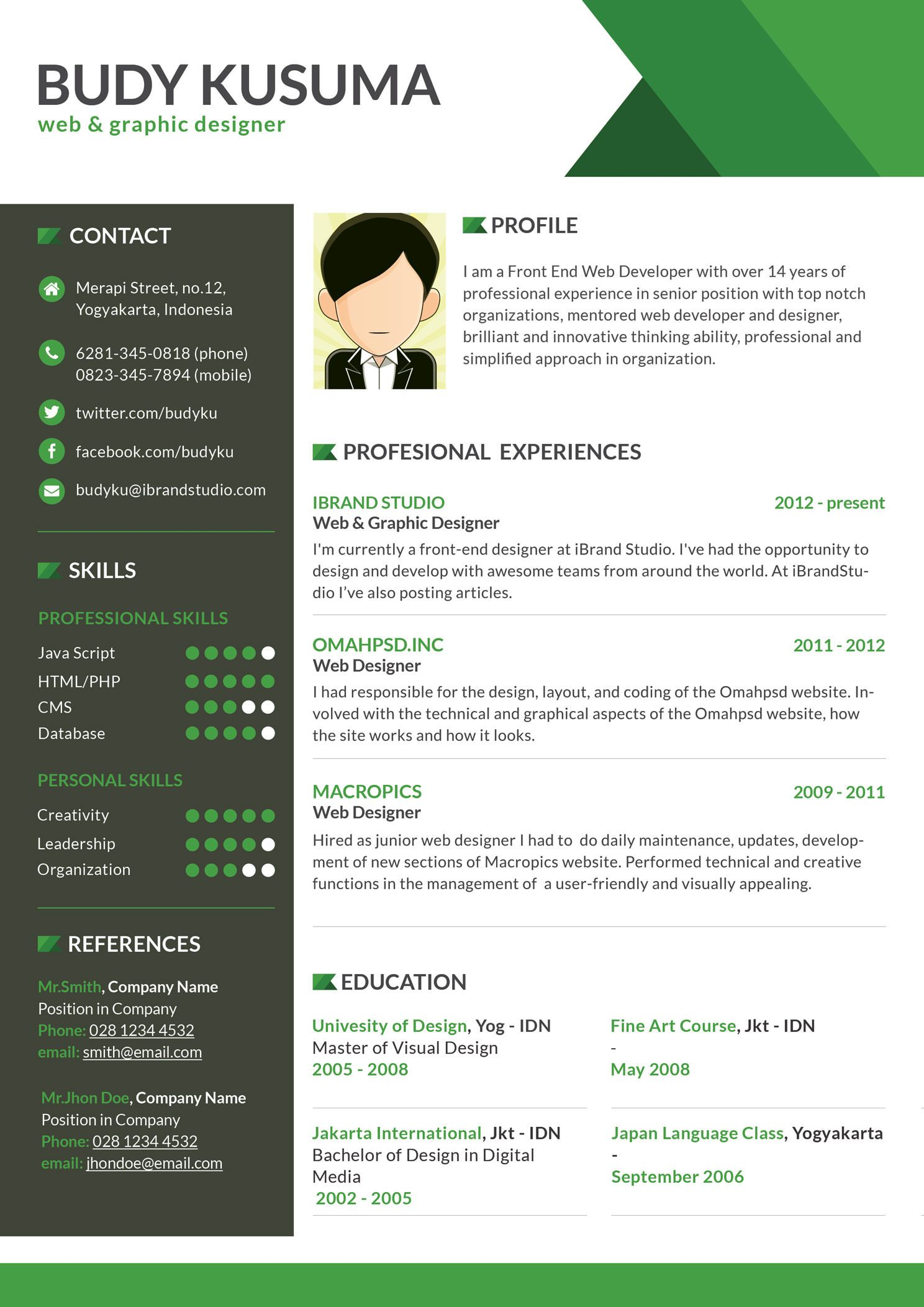 design resume skin cv resume clean cv flasher resume template green