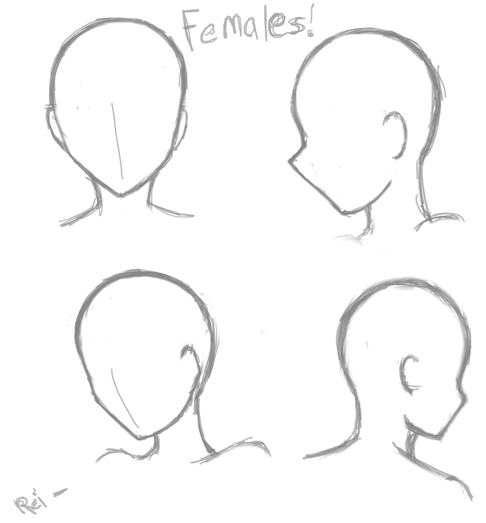 Pin By Ebru Erdil On Cizio Anime Drawings Tutorials Anime Drawings Sketches Drawing Heads