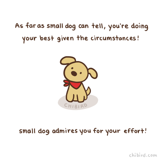 Doing your best is important, and small dog appreciates that. :D For if you've been feeling down recently.