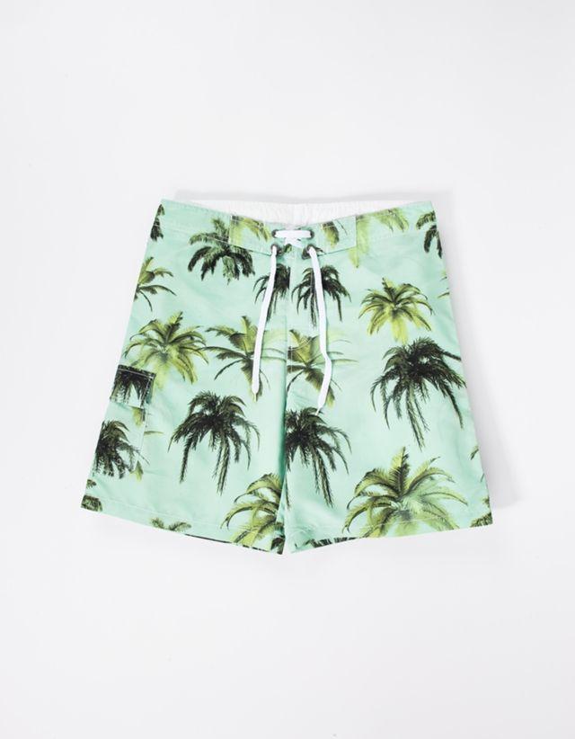 It's Palmtree Season!