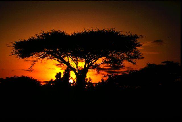 Ik denk nog vaak terug aan de prachtige zonsondergangen in Kenia.