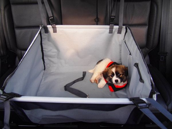 Back Seat Pet Car Seat Cover Hammock Style Single Seat