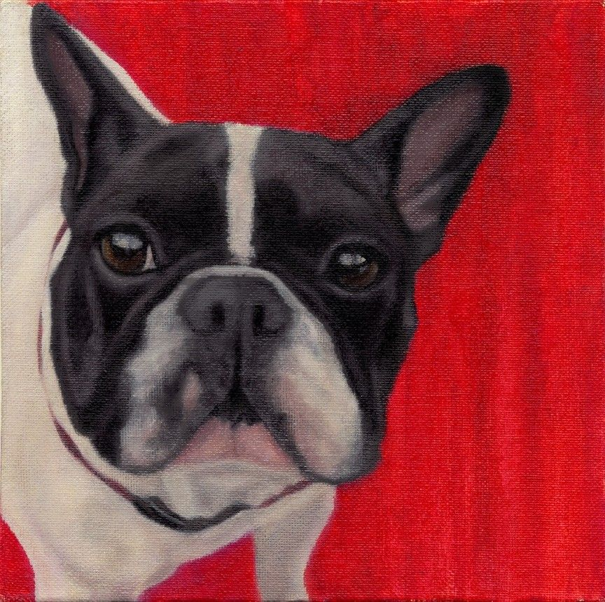 French Bulldog Framed Giclee Print 12 X 12 10 Proceeds To