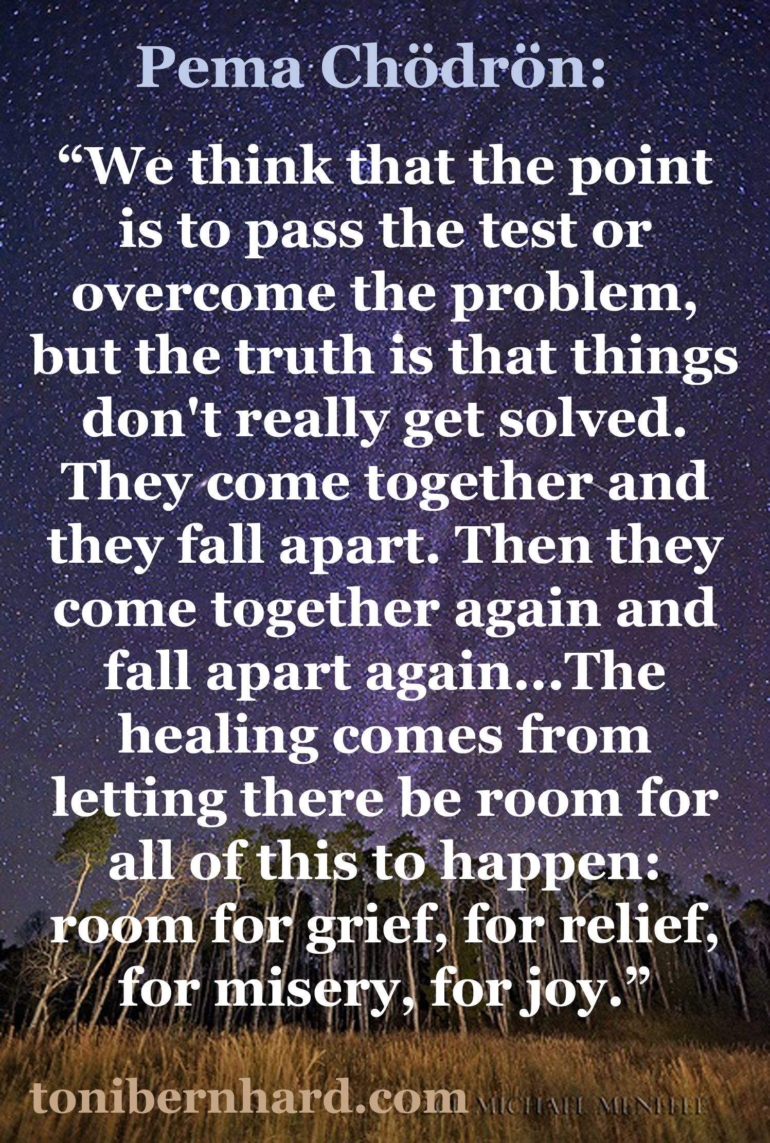This Really Is How It Is With Peace Pinterest Wisdom Pema