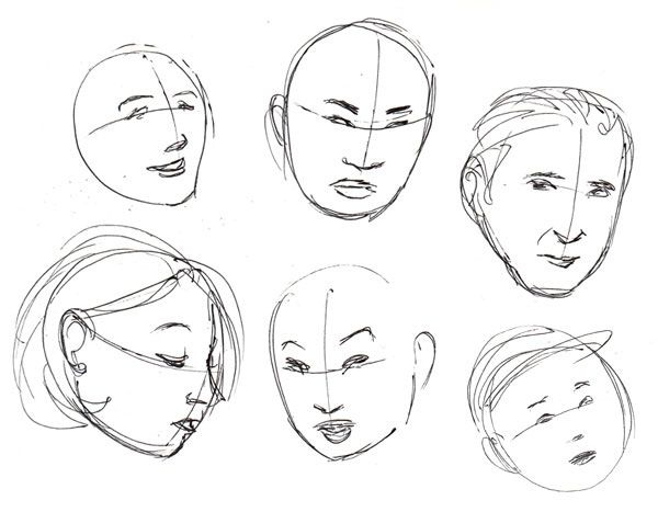 Human Anatomy Fundamentals Basics Of The Face Its All About Art
