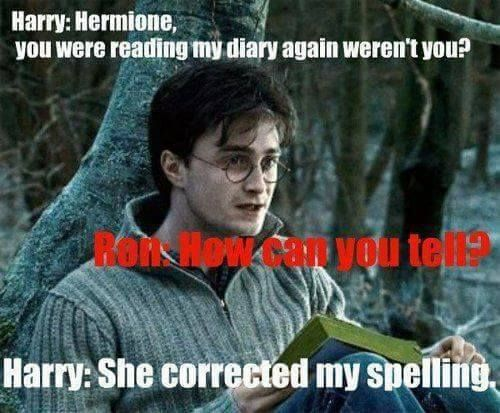 Funny Appropriate Harry Potter Memes : Harry potter memes hermione reading his diary ron
