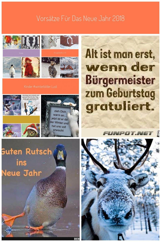 Quote Hello Winter Time To Get Cosy In 2020 Lustige Winterbilder Winterbilder Bilder