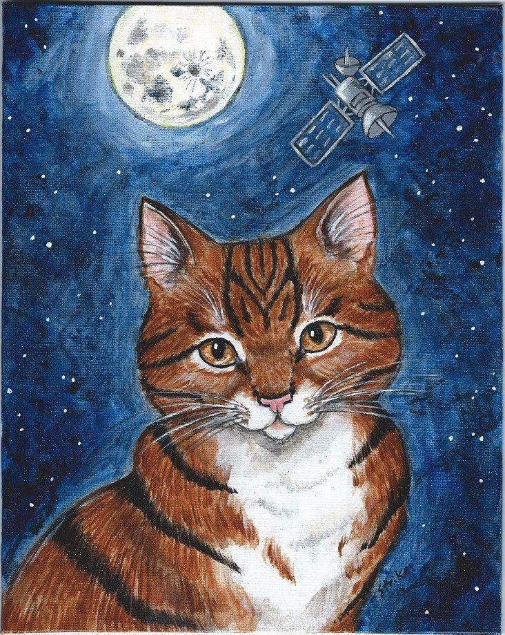 Tiger Cat Under Full Moon Sky Stars Satellite Original Hand Painted by STRIKE