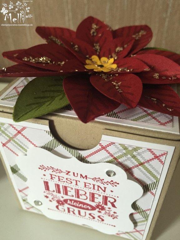 Stampin Up, Weihnachtsstern-Stanze, Box (3) (Kopie)