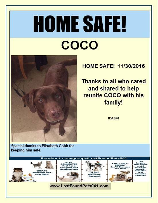 Pin By Lost Pet Services On Home Safe Lost Pets Reunited Losing A Pet Home Safes Pets