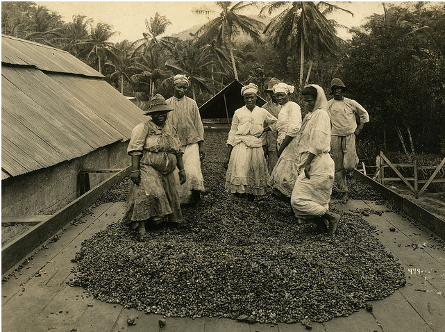 Women dance in the cocoa on a plantation in Trinidad. TT